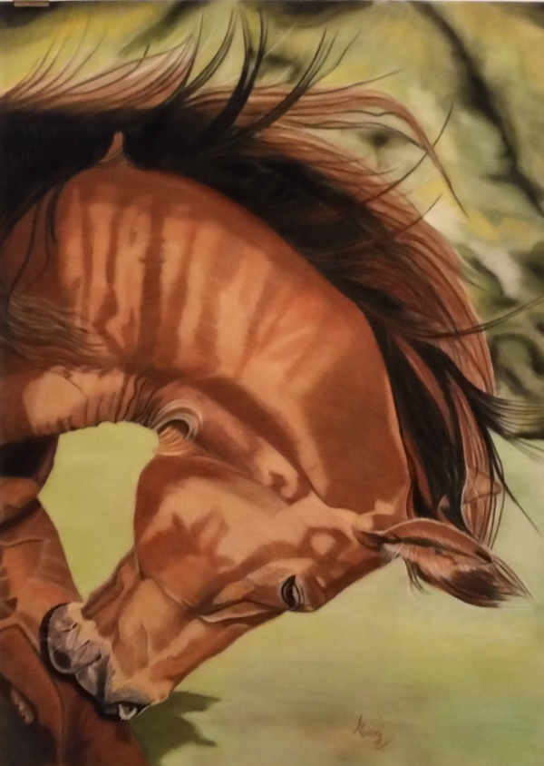 "Scratch an Itch - Pastel on Velour - Framed - From a photograph by Karen Broemsick, Photo's for Artists 2015 - 35"" x 27"""