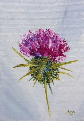 "The Thistle - 5"" x 7"""